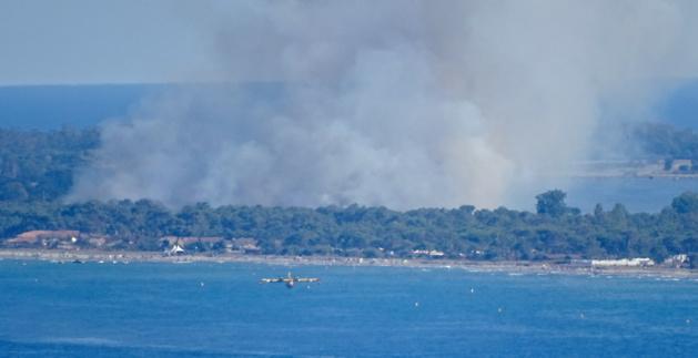 Borgu : Un feu de poubelle enflamme la pinède du cordon lagunaire de la Marana