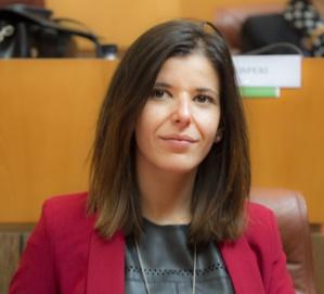 Laura Maria Poli, Présidente de la commission du développement social et culturel