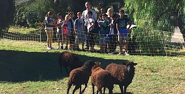 Le lycée agricole de Borgo alerte le public sur les dangers des pesticides