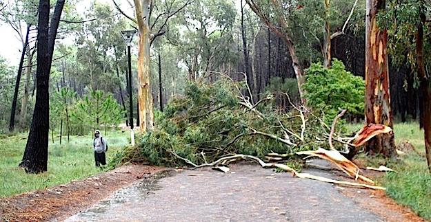 Violent orage sur Calvi