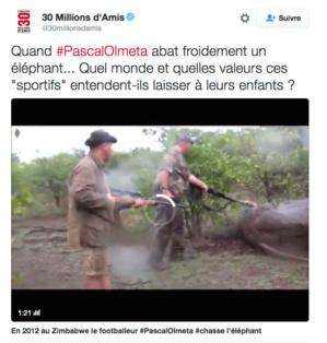 Pascal Olmeta : La vidéo qui fait polémique