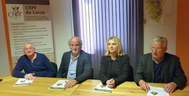 Centre Régional de la Propriété Forestière de Corse : Des élections pour faire prospérer la filière forêt-bois-liège