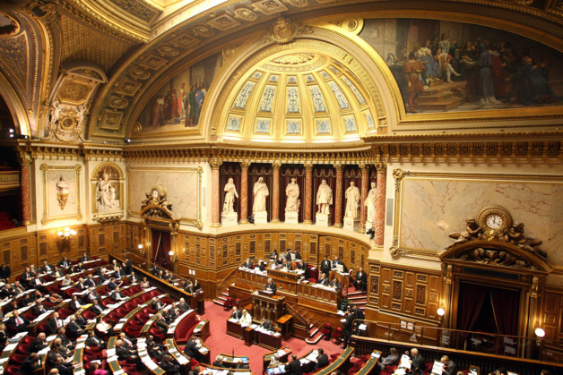 Assainissement cadastral et résorption du désordre de la propriété en Corse : Le Sénat adopte le rapport Reichardt