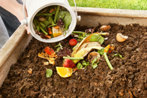 Le choix de la collecte sélective des biodéchets et de la mise en place d'un compost de qualité en Corse
