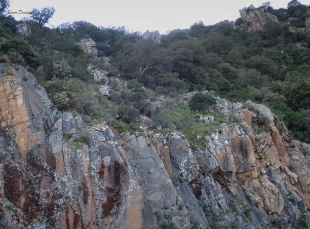 Paréidolies sur le chemin de l'Alta Rocca