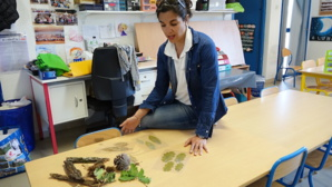 Isula Verde à la maternelle de Biguglia : La forêt corse à travers les 5 sens