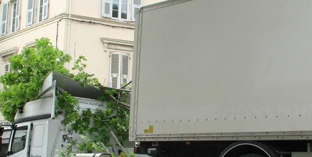 Bastia le poids lourd coinc sous les platanes for Garage des platanes