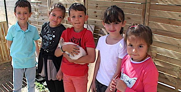 Furiani : Quand les élèves cultivent leur jardin…
