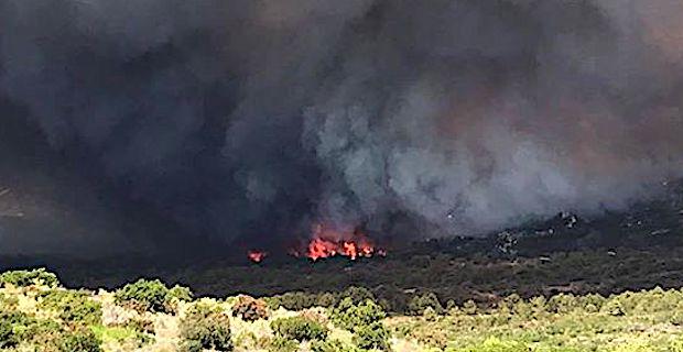 Important incendie près de Bonifacio — Corse
