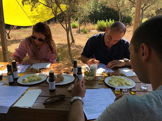 Les lauréats du 9e concours  Oliu di Corsica AOP désignés au Parc de Saleccia