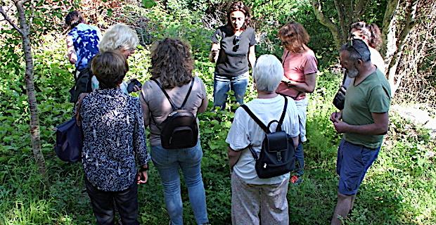Bastia : A la découverte des jardins du Guadello