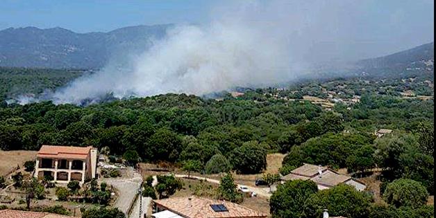 Bastelicaccia : Des habitations menacées par un feu de maquis