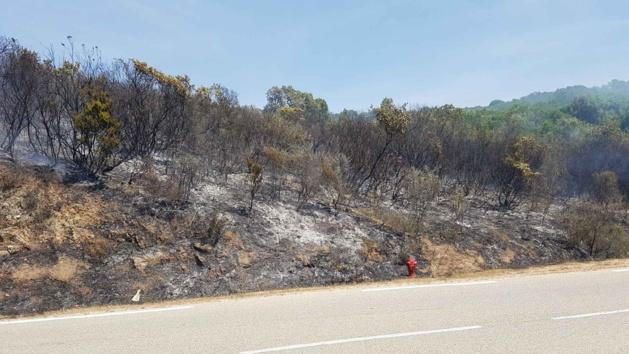 Porticcio : Le feu sur la rocade