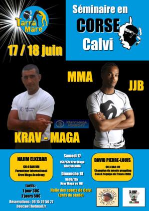 Séminaire de Jiu-jitsu et Krav Maga les 17 et 18 juin à Calvi.