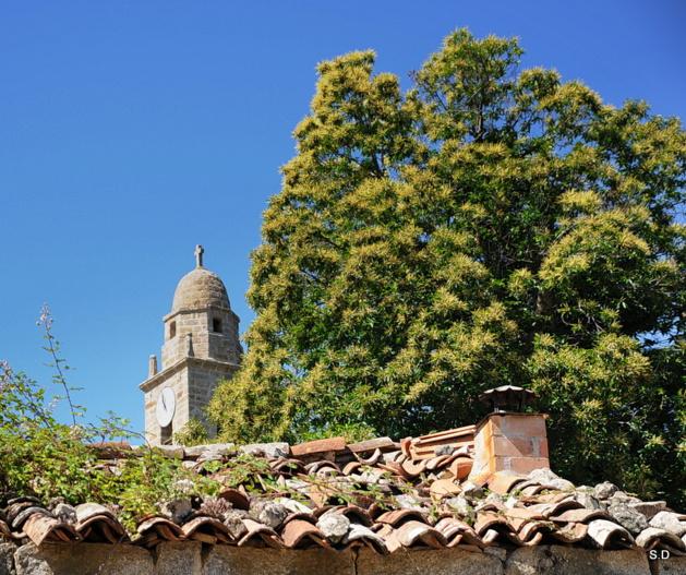 Alta Rocca : U campanili di Zirubia