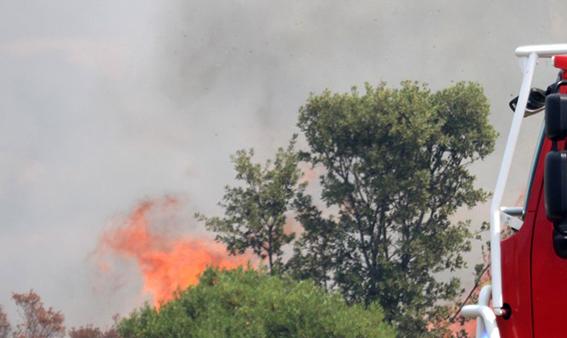 L'incendie d'Aregnu était accidentel