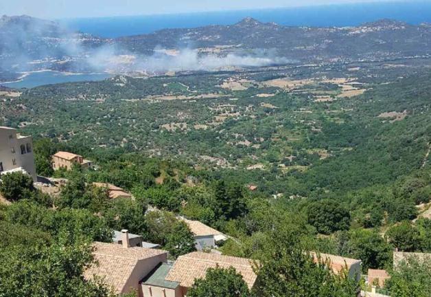 Incendies : Plusieurs foyers en Haute-Corse