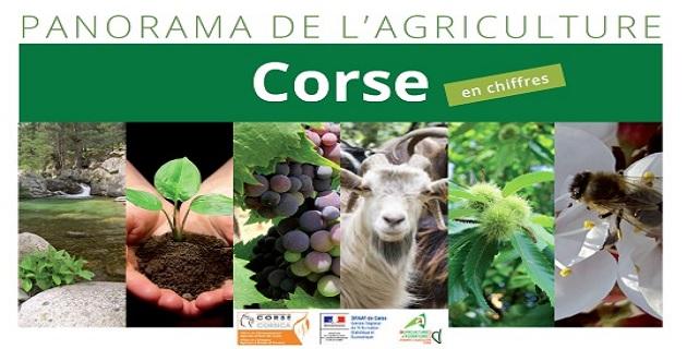 Le « Panorama de l'agriculture en Corse » un document essentiel