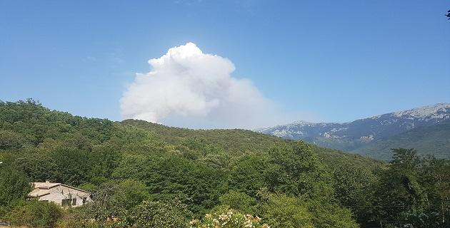 Feu en cours dans le Haut-Taravo: Palneca, Ciamanace au coeur du départ de feu