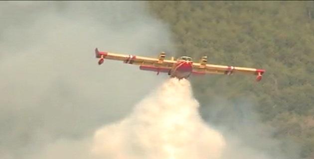 Incendies en Corse du Sud : Inquiétudes sur Palneca, le feu menace la Haute-Corse