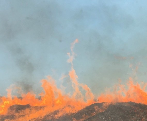 Incendies : Le feu de Palneca a basculé en Haute-Corse, avant d'être maîtrisé sur