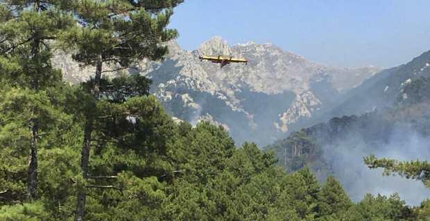 Le feu de Palneca maîtrisé en Haute-Corse.