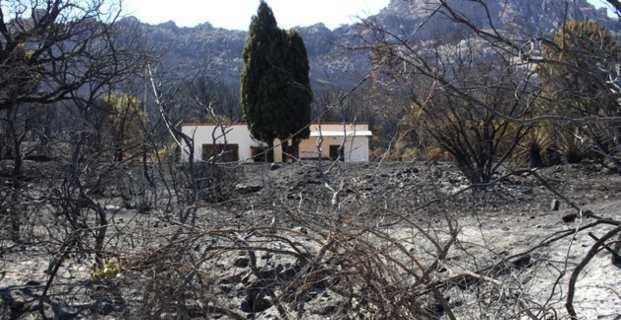 Un paysage de cendres et de désolation.