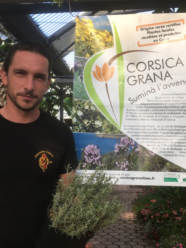 Produire local : Le parcours du combattant en Corse
