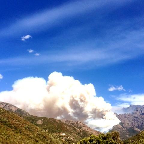 Une forêt de pins proie des flammes au-dessus de Barghjana-Mansu