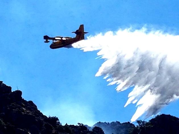 Incendies : Les sapeurs-pompiers de Haute-Corse confrontés à des conditions extrêmes