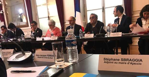 La délégation gouvernementale.