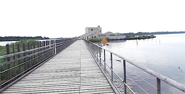 Fortin de l'étang de Biguglia.