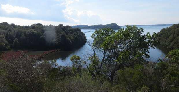 Le site de Terrenzana longe l'étang de Diana.