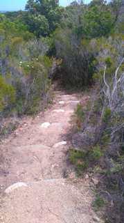 Plaine orientale : Le site naturel de Terrenzana, joyau méconnu, aménagé et ouvert au public