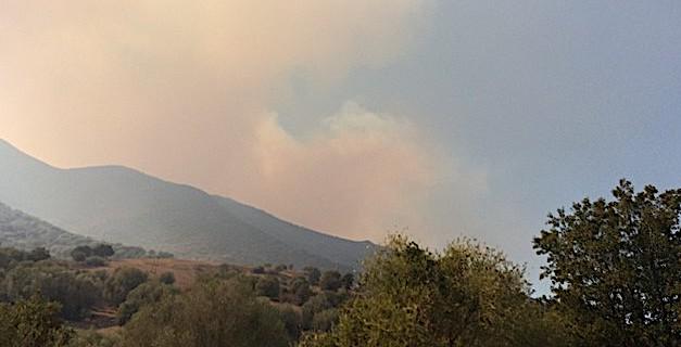 Le feu de Balagne, stabilisé, a finalement parcouru 1 600 hectares