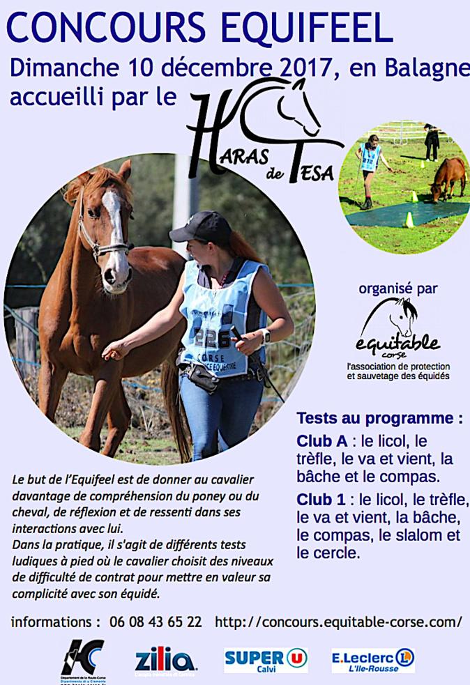 Occhiatana : Un concours Equifeel au Haras de Tesa