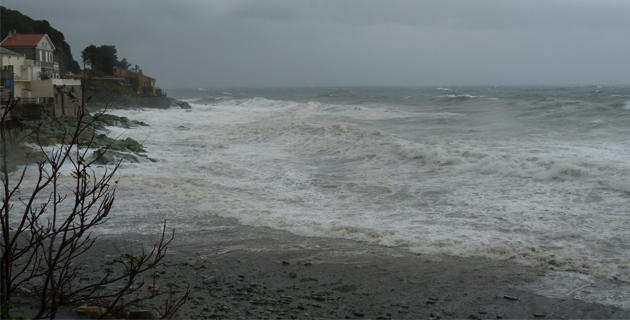 La Corse du Sud en alerte orange aux vents violents — Tempête Bruno