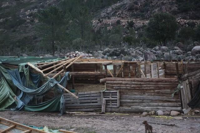 Tous à Bonifatu samedi pour aider Jean-Louis Guidoni à reconstruire sa bergerie