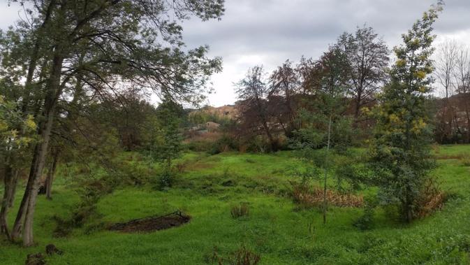 Sarrola-Carcopino : Les jardins du savoir, créateurs de lien social