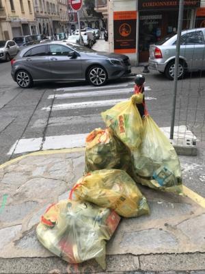 Le Syvadec et Citeo s'engagent à développer le tri des emballages ménagers en Corse