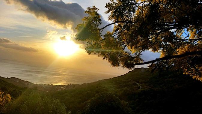 La photo du jour : Le Soleil comme une grosse boule de mimosa à Brandu