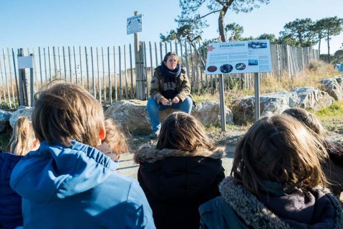 """""""Ecole de la Mer"""" : Les élèves de Joseph-Calloni visitent Stella Mare"""