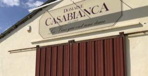 Plaine Orientale : Polémique et mobilisation contre la mise aux enchères du domaine Casanis