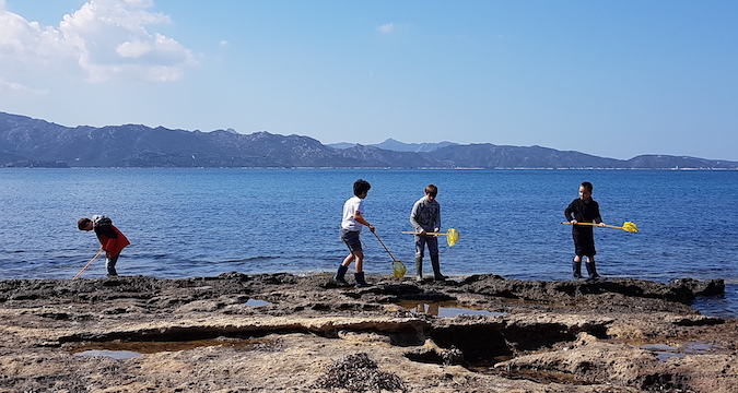Saint-Florent : Les élèves de l'école Porette de Corte sur la plage d'Olzu