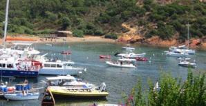 Nanette Maupertuis : « Il faut faire de la Corse une destination éco-touristique, unique en Méditerranée »