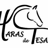 """""""Premiers soins aux équidés"""", thème du stage au Haras de Tesa.le 13 mai"""