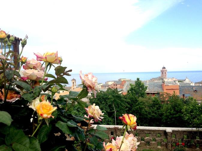La photo du jour : Les roses et le Palais des Gouverneurs de Bastia