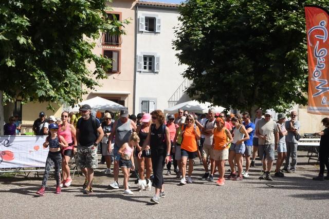 Un succès pour la 3e édition d'I chjassi di u spera in Calinzana