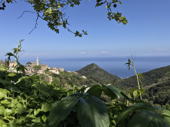 La photo du Jour : San Martinu di Lota, vue imprenable sur la Tyrrhénienne…