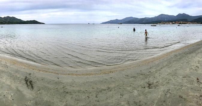 La photo du jour : Bain matinal dans le golfe de Saint-Florent
